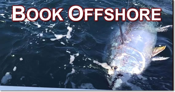 Book Offshore3